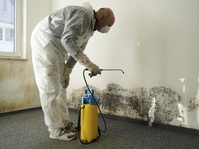 Cleaning properly is essential in removing mould permanently.